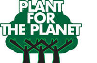 Online board elections at Plant for the Planet